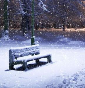 ninge11