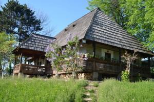Bucovina1 4